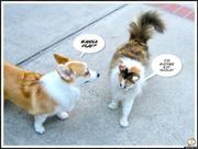 Lucy &Cali - Wanna Play?