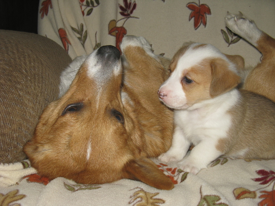 Wynn and Winry