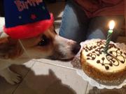 Kobe's Birthday