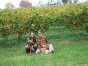 Found a vineyard