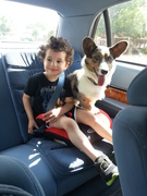 Jack loves Kai...might need a doggie seat!