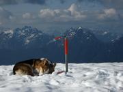 Lennox Mt. summit 5900'