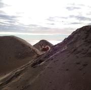 Staten Island dunes