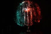 Fantasia fiber optic lamp