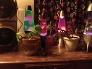 Lava Lamps and Potted Plants :)