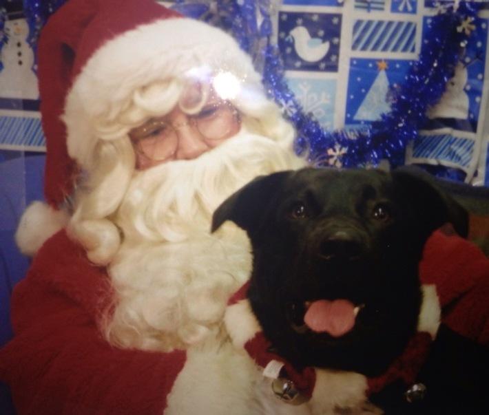 Merry Xmas To OG from Nikko Bella