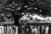 Comemoração do  3º aniversario de Betim 1942 com missa embaixo da arvore do oleo
