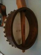 Fretless Menzies Tackhead banjo (back)