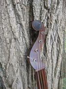 Boucher Banjo #120 peghead