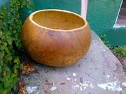 Cut Gourd