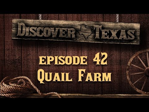 Discover Texas Episode 42 Quail Farm
