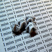 I_miss_you__by_Icecubed171