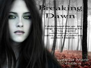 Breaking-Dawn-Bella