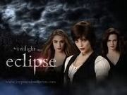 My Family the Cullens
