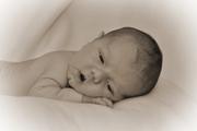 Baby Jack