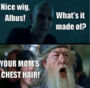 Voldemort and Dubledore