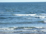 More sea