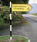 Galway Leprechaun Crossing