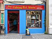 Galway pet store