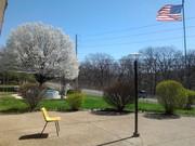 2011-03-23 12.20.56