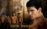 Wolf Pack With Jacob Black