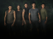 New Moon Wolf-Pack 2