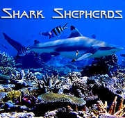 Shark Shepherd