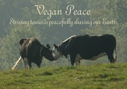 Vegan Peace