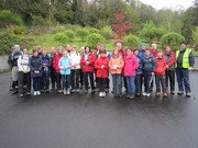 Sponsored Walk-Binevenagh Forest