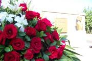 Parada Militar en homenaje al natalicio de José Martí el 28.01.11.