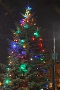2015 Q River Tree Lighting Celebration Quinnipiac River