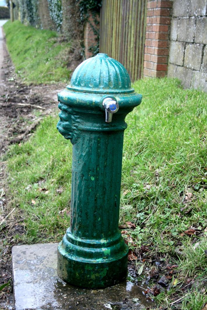 Mountainfreshspringwater,toxinfree-nocharge