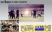 Shea Concerts