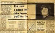 How does a beatle live article