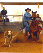 Ronnie roping color