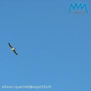 Le célèbre ciel bleu breton