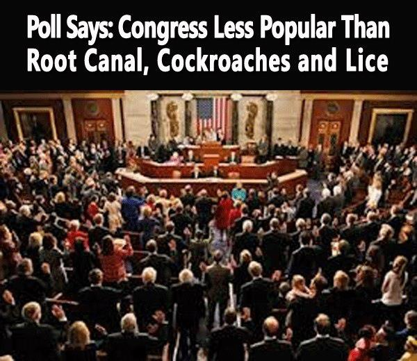 New Poll- Congress Less Popular Than Root Canal, Cockroaches and Lice