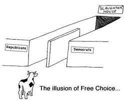 Illusion of free choice