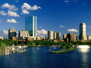 Boston Corgis