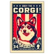 Georgia Corgis