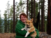 Corgis Who Camp!