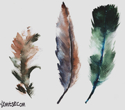 52 weeks of watercolour birds