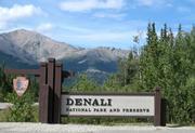 The Denali Coven
