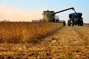 American Farmers