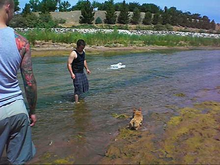 Lola Marley & Roxies Day at the River 6-1-08