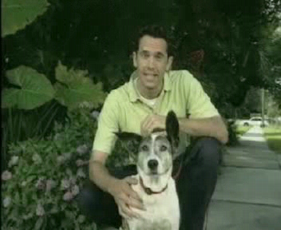 Good Dog U - Pool Dog