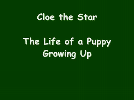 Cloe Growing Up