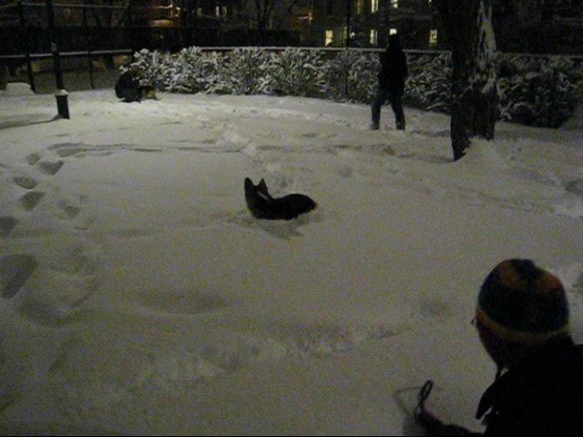 SNOW!!!!