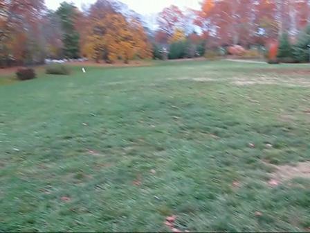Caden 17 weeks Fetch