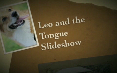 Leo and the Tongue  Slideshow